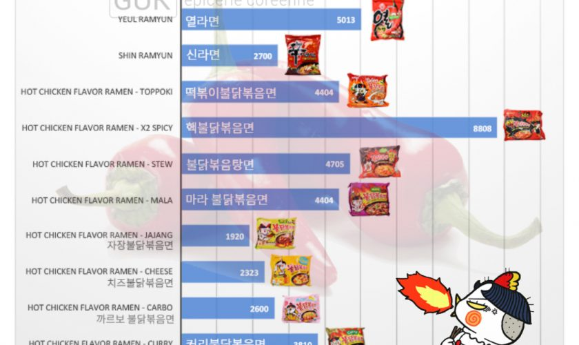 [Zoom sur…] Hot Chicken Flavor Ramen – 불닭볶음면 – Buldak Bokkeum Myeon